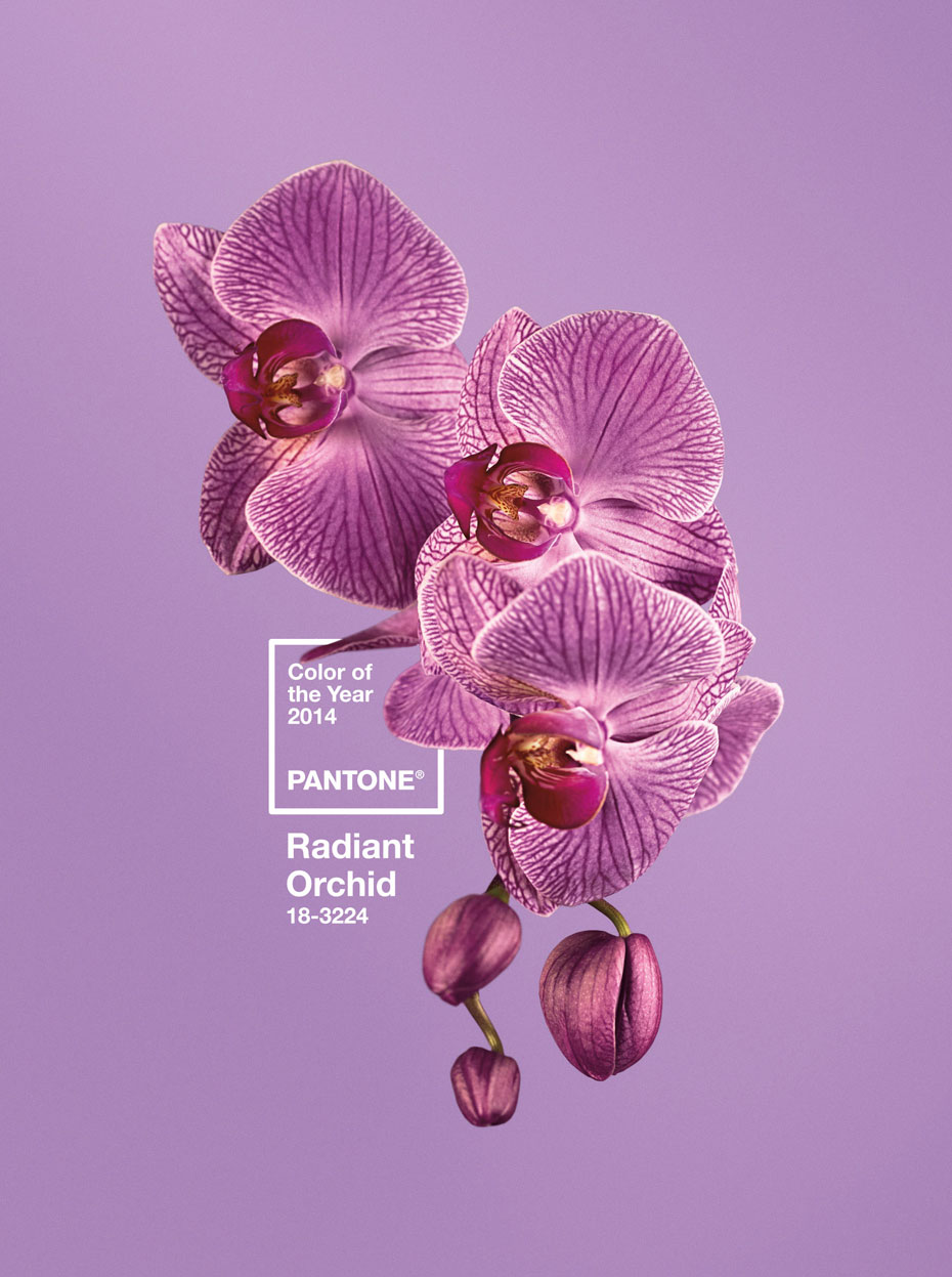 pantone18-3224-radiant-orchid